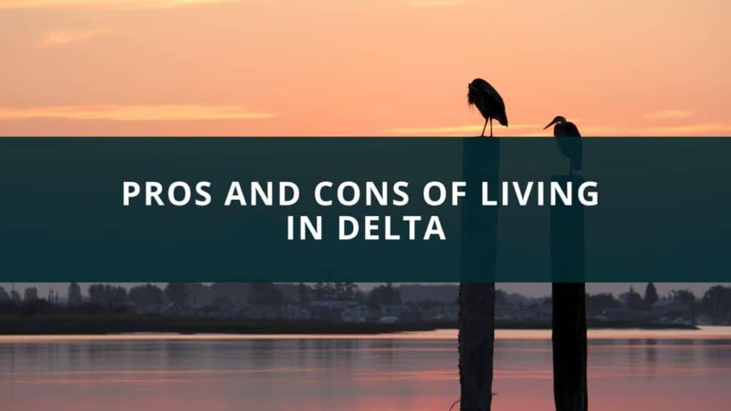 Pros and Cons of Living in Delta