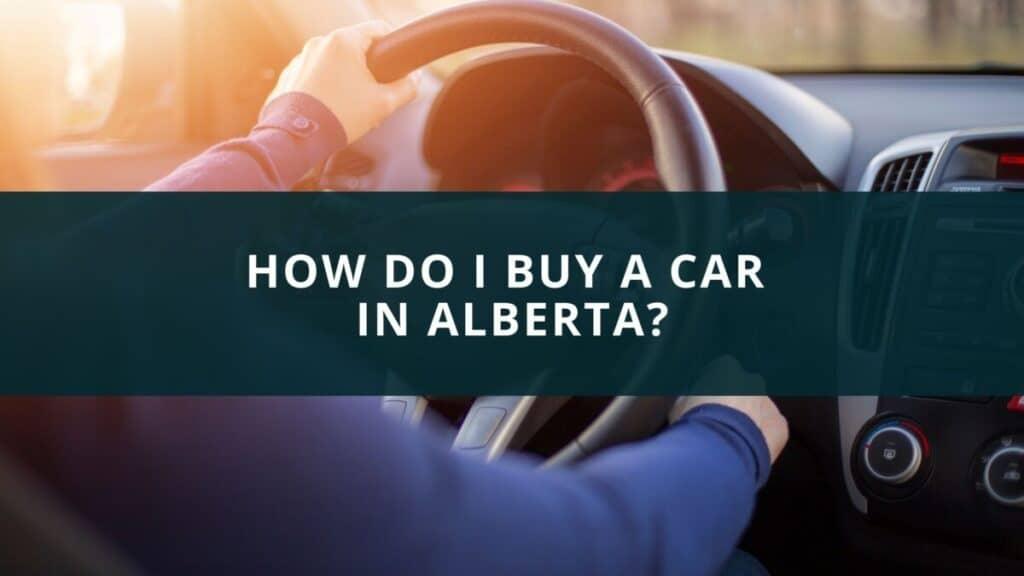 How do I buy a car in Alberta?
